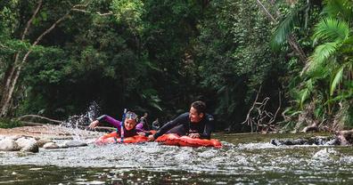 River drift snorkelling tour of Daintree Rainforest