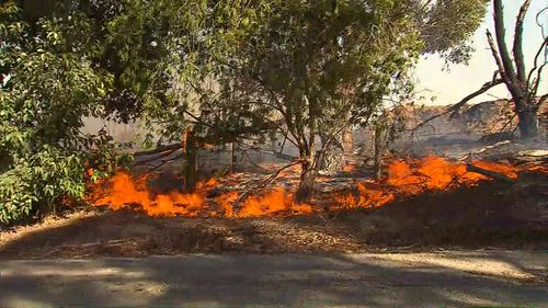 The fires threatened properties. (9NEWS)