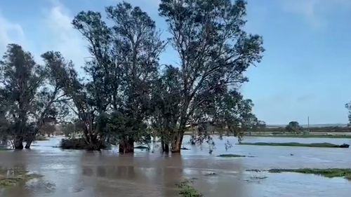 WA floods wild weather