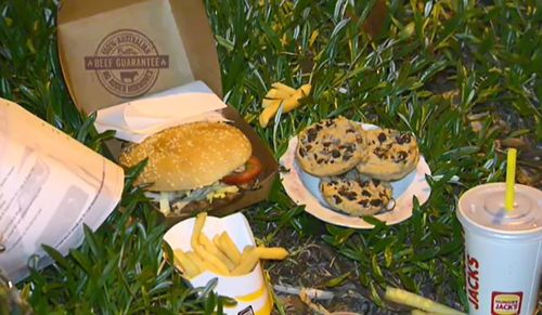 A burger, chips, soft drink and baked treat were also left near the crash scene for Aivy. (9NEWS)