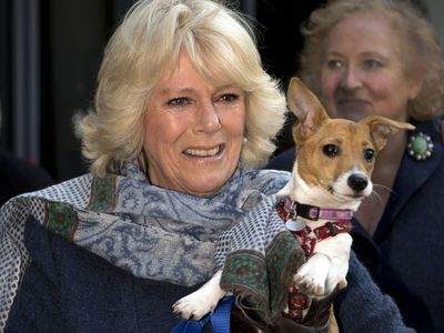 Camilla, Duchess of Cornwall with Bluebell