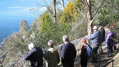 Alum Cliffs Track, Hobart