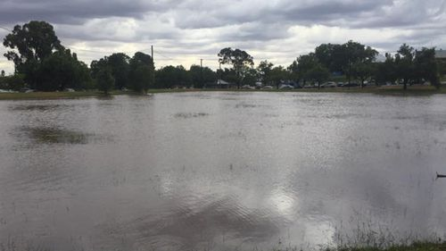 Almost one month's worth of rain falls in six hours in Dubbo