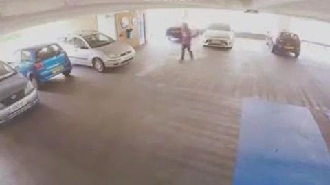 Alleged car thief tackled in the act