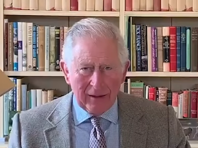 Prince Charles addresses the nation during the coronavirus crisis after contracting the illness.