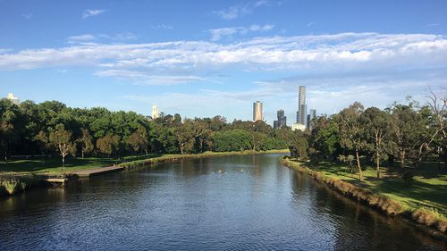 The Yarra River at 7am today, where it was already 20 degrees. (Supplied/Katie Hale)