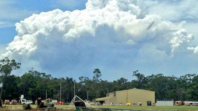 Huge clouds of smoke were emitted from the flames, seen from Northcliffe this morning. (9NEWS)