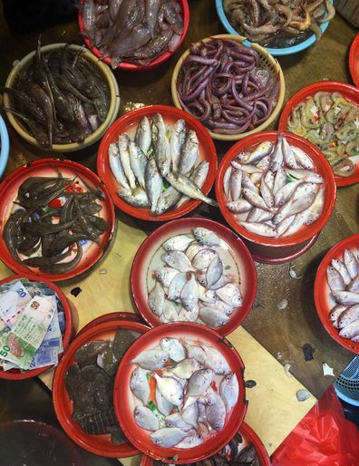 Fish at Hong Kong's wet markets