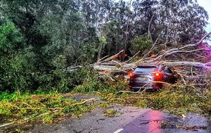 Hundreds of homes still without power a day after wild Sydney storms