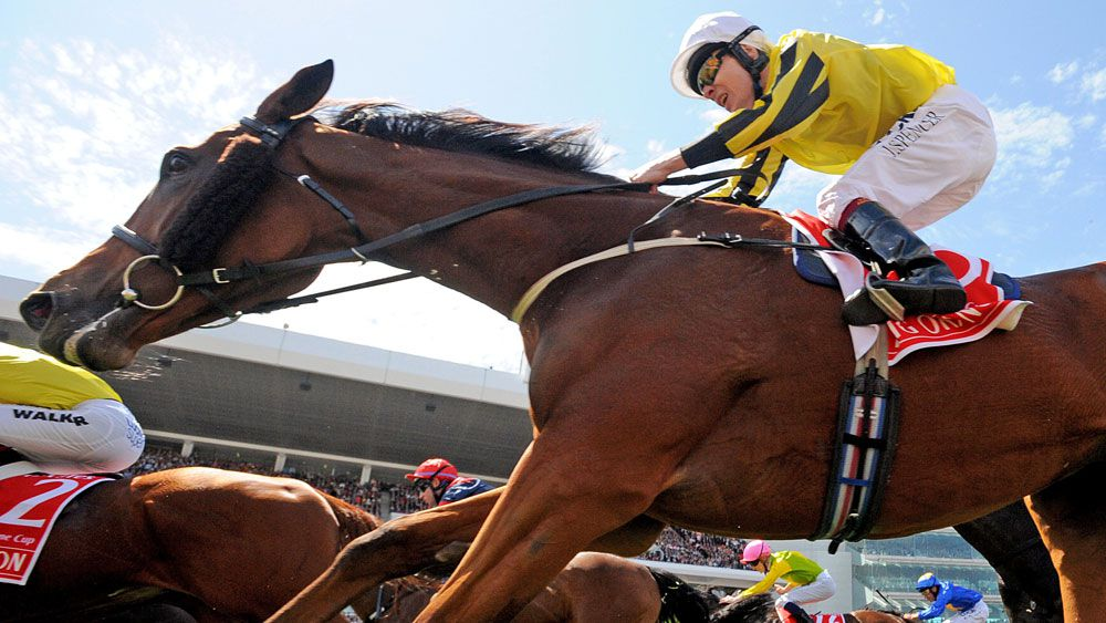 Melbourne Cup starter Big Orange will contest the Zipping Classic. (AAP)