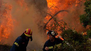 Firefighters battle a blaze in Ellinika village on Evia in Greece.