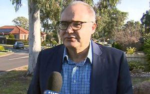 Sacked Labor MP Adem Somyurek speaks out on crude text message scandal as Anthony Albanese slams it 'completely unacceptable and inappropriate'