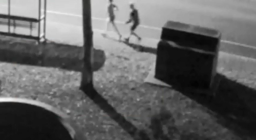 Police are appealing for help locating a man after a female jogger was attacked during an early morning run last week.