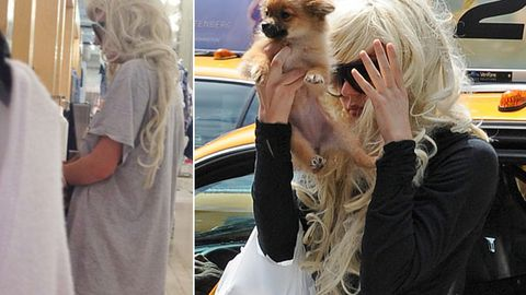 Amanda Bynes in psych lockdown after setting pants on fire in driveway ... with puppy at risk