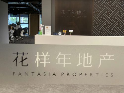 Fantasia Holdings Group, a mid-size Chinese real estate developer, has added to the industry's financial strain.