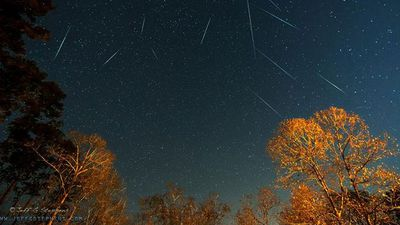 Geminids captured during the peak display in Louisiana. (Jeff Stephens, Twitter)