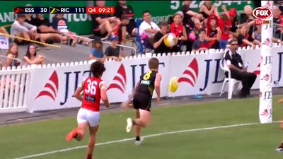 AFL: Richmond and Melbourne victorious in pre-season games