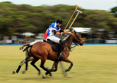 """<a href=""""http://www.portseapolo.com.au/"""" target=""""_blank"""">Jeep Portsea Polo</a>"""