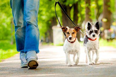 Take a brisk 15-minute walk