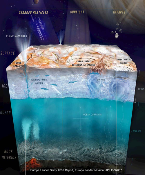 Europa is covered in a thick layer of ice.