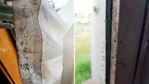 Photos showing the mould in Ms Harrison's home. (Photo: Melissa Harrison.)