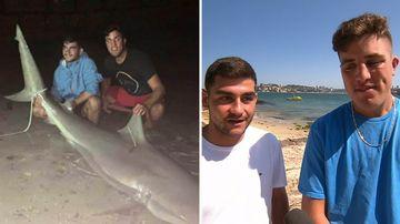 Sydney Harbour bull shark catch teenage fishermen