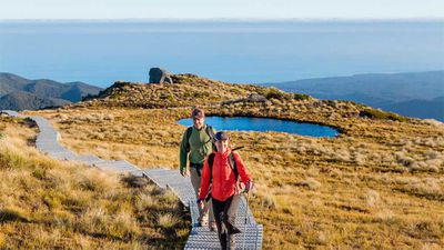 <p><strong>South Island: Hump Ridge Trail, 55km loop (3 days), southern Fiordland</strong></p>