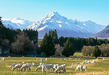 Daily Quiz: What is the Maori name for New Zealand?