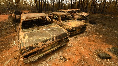 A row of burn-out cars sit in a clearing in Tingha.