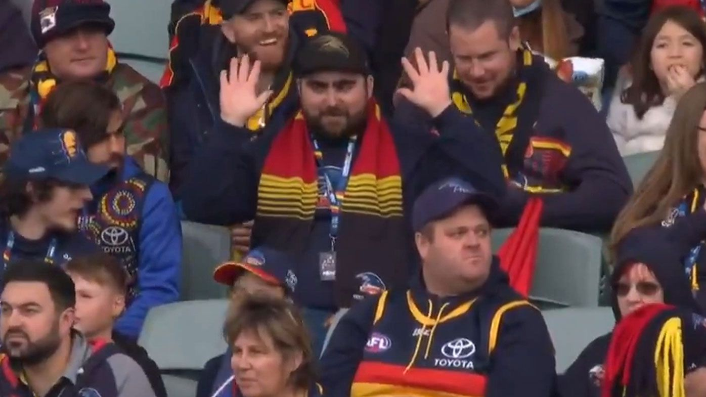 AFL fan
