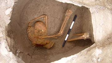 One of the excavated skeletons in Sidon, Lebanon. (Dr Claude Doumet-Serhal)
