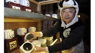 <strong>Panda dung tea</strong>