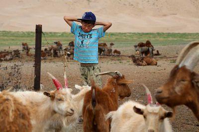 Start of the day in the Gobi desert (Mongolia, 2014).