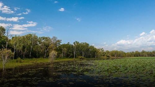 Pria itu terluka saat memancing di Taman Nasional Kakadu dekat Darwin.