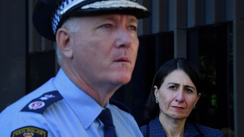 NSW Police Commissioner Mick Fuller will investigate the Ruby Princess cruise ship debacle.