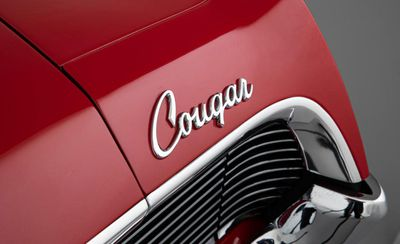 Cougar boot (Bonhams)