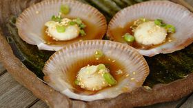 Steamed saucer scallops with green onion and ginger