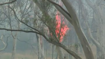 Firefighters control large bushfire in Victoria as mercury soars