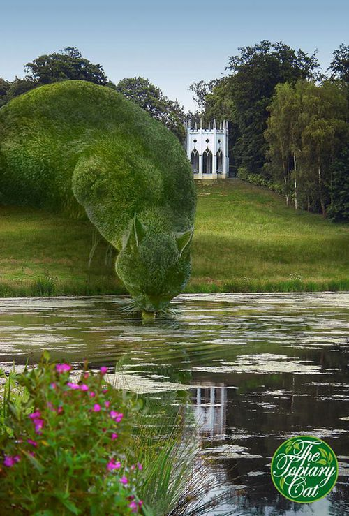 Richard Saunders/The Topiary Cat (Facebook)