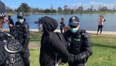 Masked protester arrested