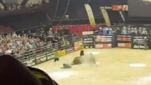 The bull's leg was broken during the rodeo.