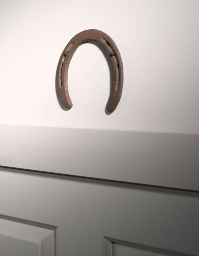 <strong>Horseshoes</strong>