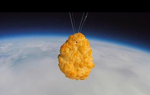 World's first chicken nugget launched into space