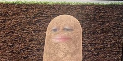 Woman turned herself into a potato during video conference call.