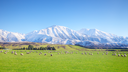 The world's sexiest accent has been revealed