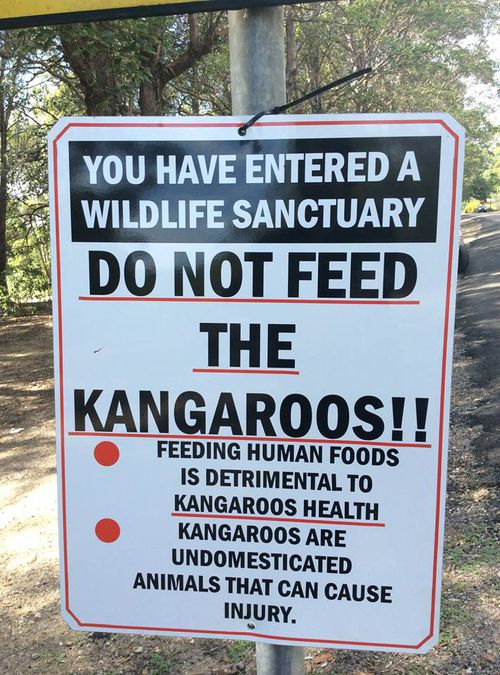 A warning sign has been erected urging people to stop feeding the kangaroos. (Kroosn Shuttle Service Pty Ltd/Facebook)