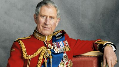Prince Charles photographed with official medals