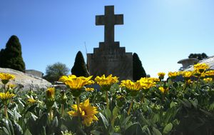 Families claim they've been fined while laying flowers at graves