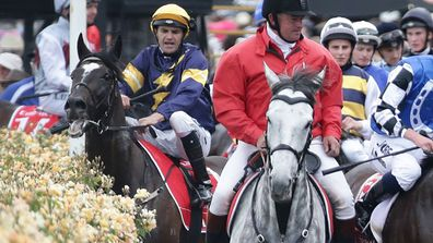 Melbourne Cup horse Araldo caught in fence (Gallery)