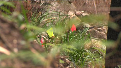 Police have established a crime scene after bones were found in the Royal National Park on the weekend.